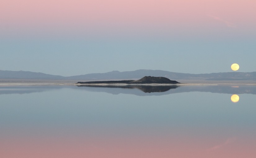 Welcome to Mono Lake!