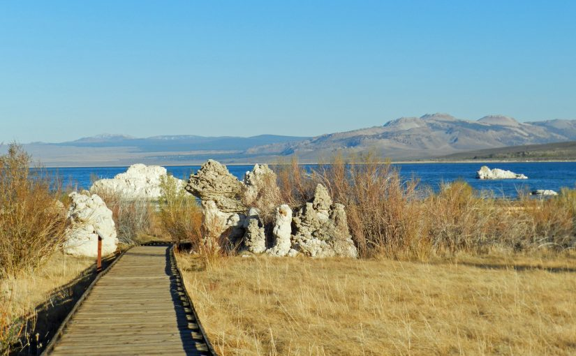 Visiting Mono Lake County Park