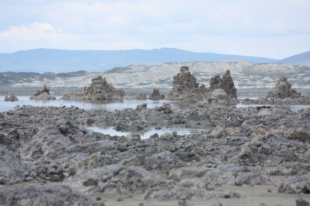 2015-07-10-old-marina-area-shoreline-en_0681