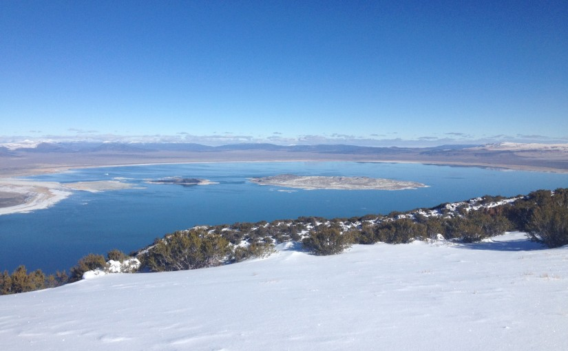 1: Welcome to Mono Lake!